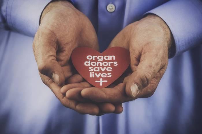 Δωρεά οργάνων: ένα χριστουγεννιάτικο δώρο