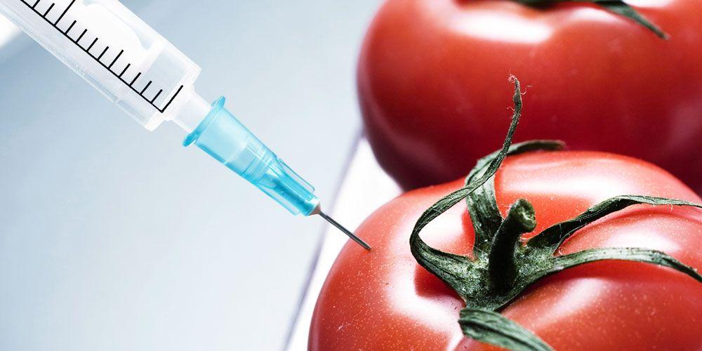 Γενετικά Τροποποιημένα Τρόφιμα: Άνθρακας ή Διαμάντι;