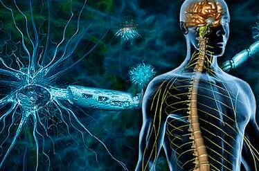 Σκλήρυνση κατά πλάκας: Τι είναι, συμπτώματα, διάγνωση και αντιμετώπιση